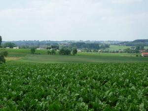20 km westlich von Brüssel
