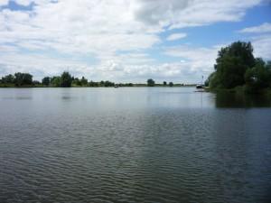 der Neder-Rijn