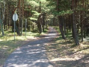 Kurische Nehrung zwischen Nida und Klaipeda