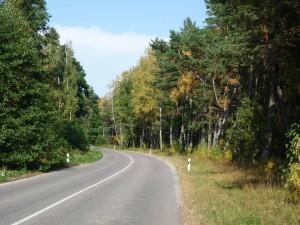 Kurische Nehrung, zwischen Rybatschi und Litauische Grenze