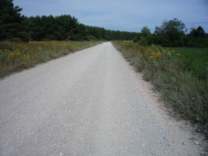 Naturstraße in Lettland