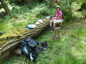 Picknick auf der Waldlichtung