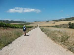 hinter Villamayor de Monjardin