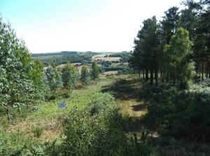 herrliche Landschaft 2